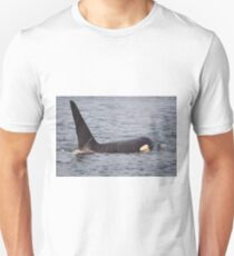 Male Orca (Killer) Whale- J Pod Unisex T-Shirt