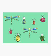Insect pattern Photographic Print