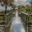 After the Rainstorm by John  Kapusta