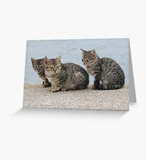 Wild Things Greeting Card