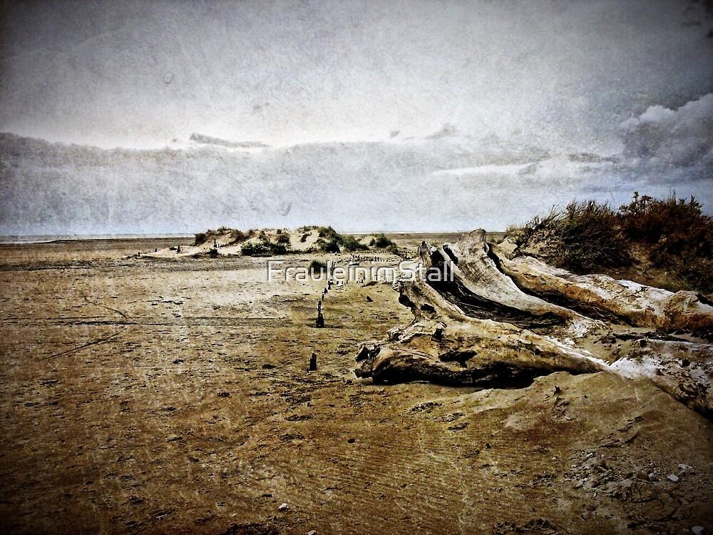 Deadwood at the coast by FrauleinimStall