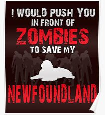 Front Of Zombies Newfoundland Poster