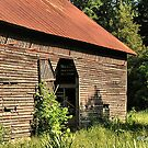 """""""A Testament to Weathering the Long Hard Years""""... prints and products by © Bob Hall"""