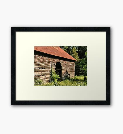 """""""A Testament to Weathering the Long Hard Years""""... prints and products Framed Print"""