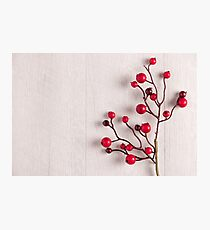Red berries holly on white Photographic Print
