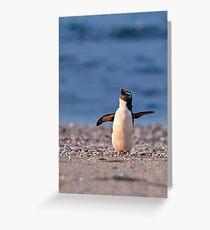 Fiordland Crested Penguin - New Zealand Greeting Card