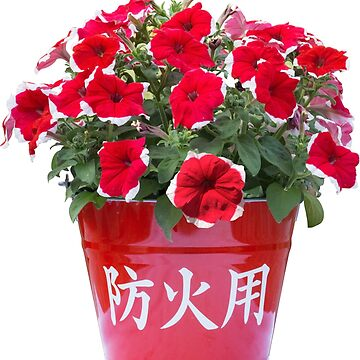 Red Flowers in a Red Bucket by freshlysliced