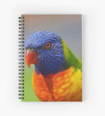 You want Colour Spiral Notebook