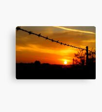 Barbed wire sunset (landscape) Canvas Print