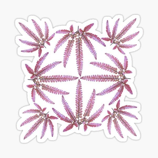 Fern frond- Adiantum hispidulum Sticker