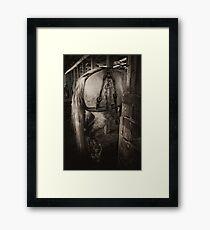 PERCHERON DRAFT HORSE Framed Print