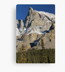 Mountain I Canvas Print