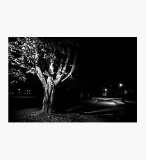 Rural street scene at night Photographic Print