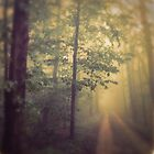 Neverland by OLIVIA JOY STCLAIRE