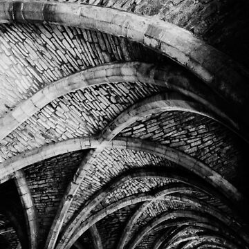 The cellar at Fountains Abbey by PaulBradley