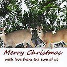 Merry Christmas with love from the two of us by Poete100