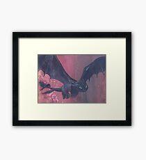 Toothless Flies Framed Print
