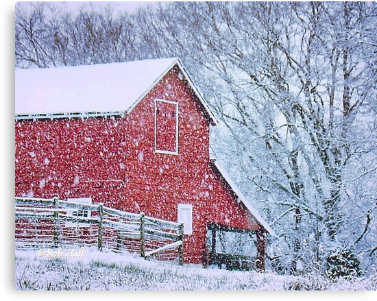"""Barn Bluster""... prints and products by Bob Hall©"