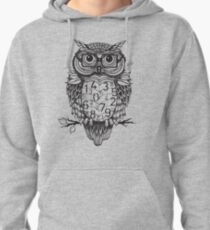 Owl sketch with numbers, glasses Pullover Hoodie