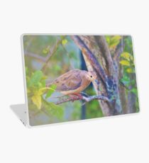 Sweet and gentle dove Laptop Skin