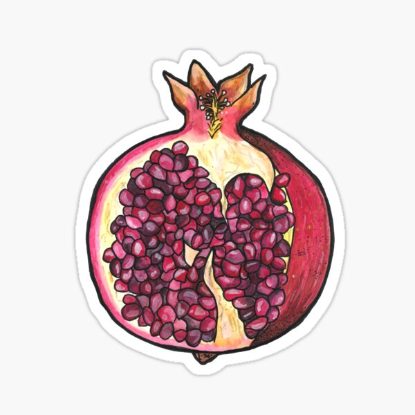 Pomegranate  Sticker