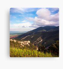 Bighorn National Forest Vista Canvas Print