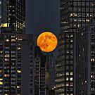 Manhattan Super Moon by TaiChiJohn