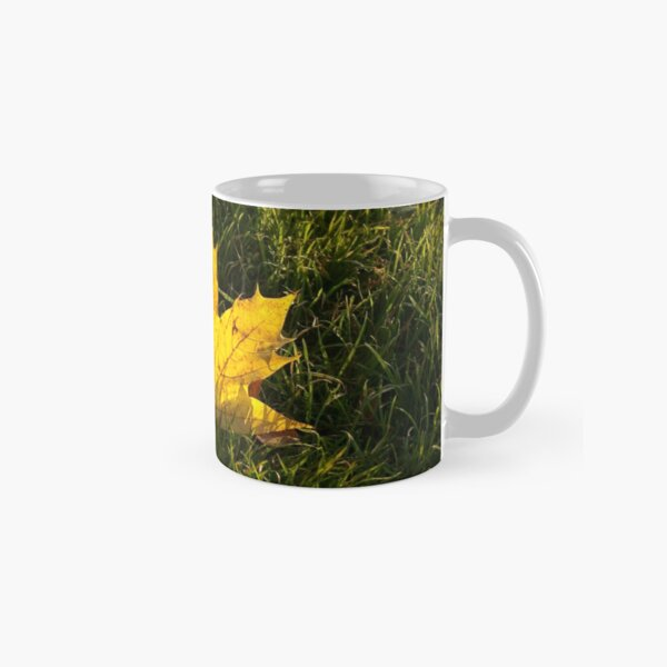 A fallen maple leaf in the sun Classic Mug
