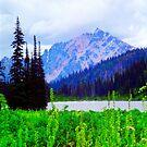 Alpine Lake by TaiChiJohn