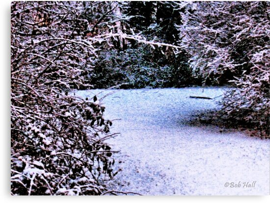 """""""Snowy Pathway""""... prints and products by © Bob Hall"""