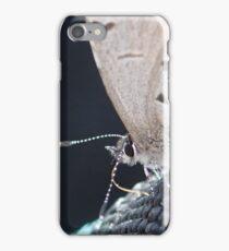 Butterfly Macro iPhone Case/Skin