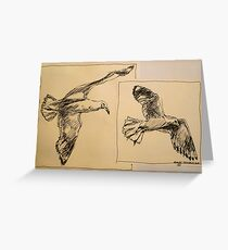 Two flying Seagulls: pen sketch. Greeting Card