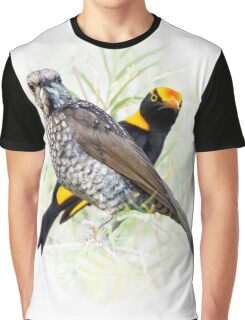 Regent Bowerbird Pair Graphic T-Shirt