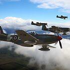 Southern Cross Mustangs by Mark Donoghue + Hangar 7 Art