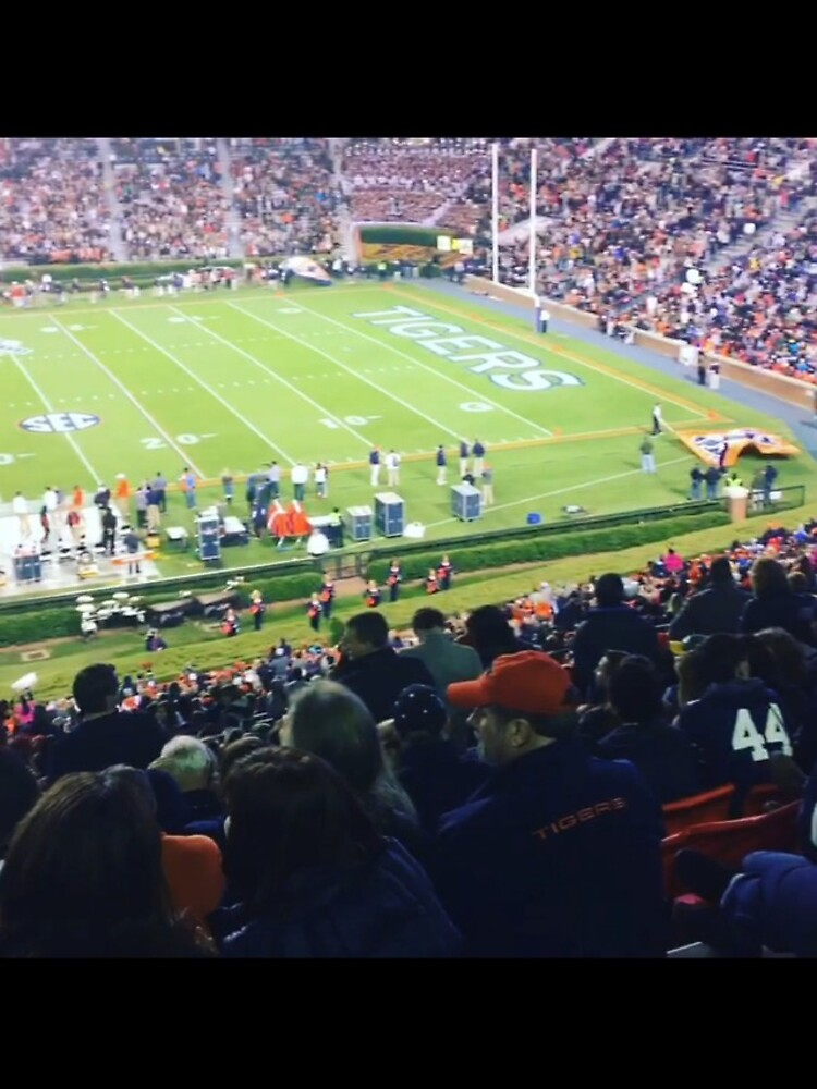 Auburn Enlightened  by pandpmedia