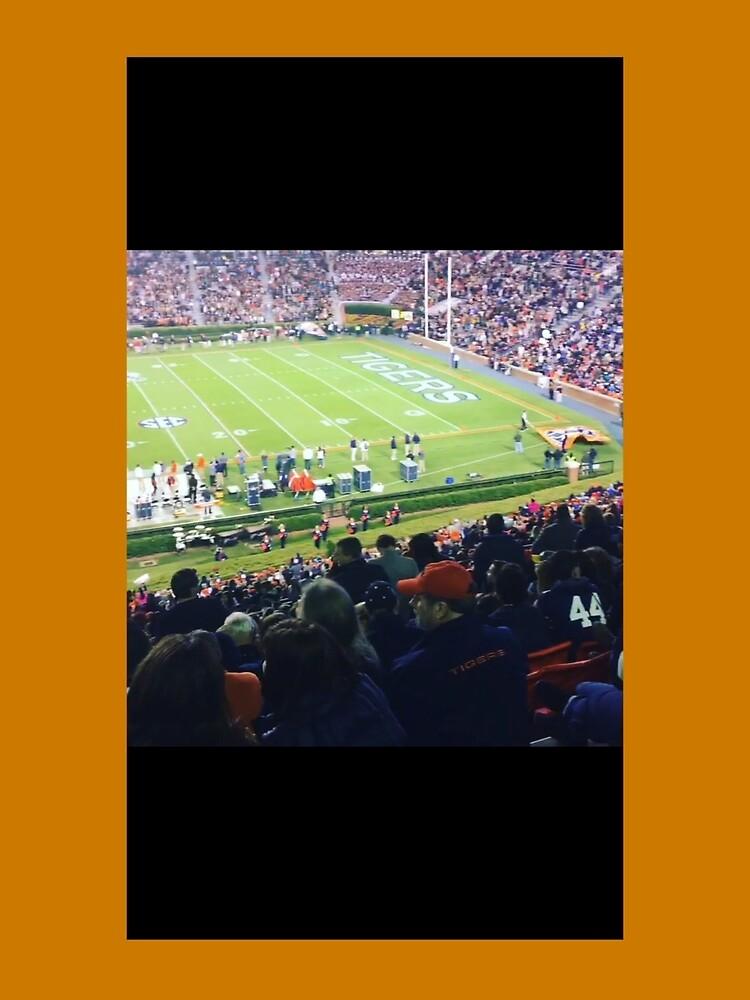 Auburn Enlightened  by pandpmedia