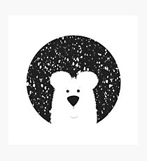Bear Snowing Photographic Print