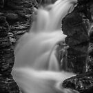 Bushkill Falls by Michael Mancini