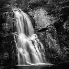 Bushkill Falls II by Michael Mancini