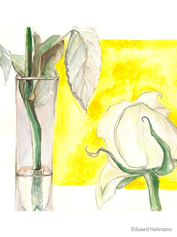 Rose by Sadykova