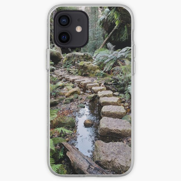 Grand Canyon Stepping Stones iPhone Soft Case