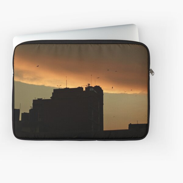 one of these days.  Laptop Sleeve