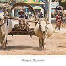 Mingun, Myanmar by Jacinthe Brault
