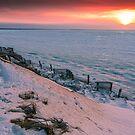Cape Cod Winter Eastham Thumpertown Beach by Artist Dapixara