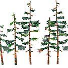 Fir trees by Ruud van Koningsbrugge