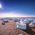 Sun and Ice Cape Cod by Artist Dapixara