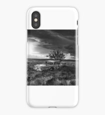 Planted Meteor Stock Car - BW iPhone Case/Skin