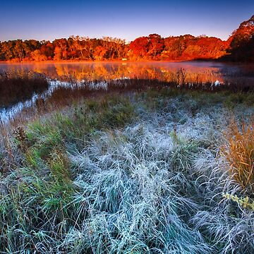 Fall Foliage and First Frost Cape Cod by capecodart