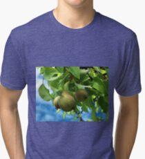 Pears Tri-blend T-Shirt