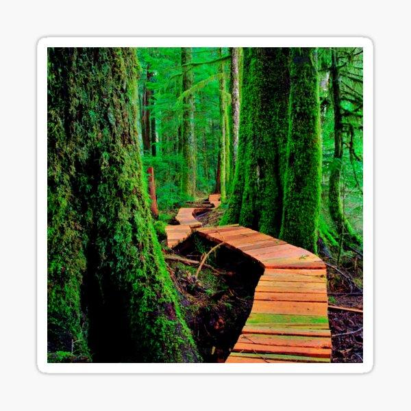 Rainforest Walk Sticker
